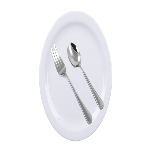 Melamine Plates,Stainless steel Fork and Spoon